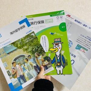 【海外旅行保険どこに加入する?】AIG・東京海上日動・tabihoの比較