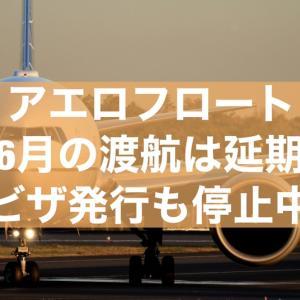 【アエロフロート運行延期】同時に留学延期決定