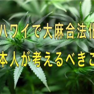 ハワイで大麻合法化、日本人への影響は?知っておこう大麻の秘密