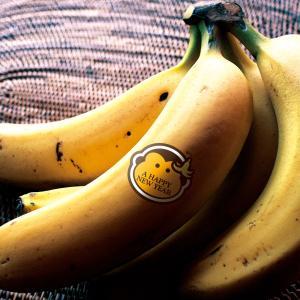 「申年の年賀状バナナ」時季外れですがデータあったので・・