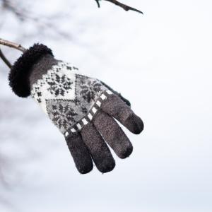木にぶらさがった手袋