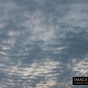 鰯雲の雲り空