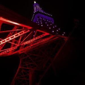 月に一度は見に行きたい!色が毎月変わる夜の東京タワー