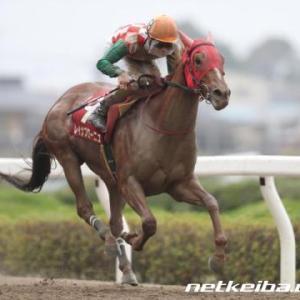 浦和競馬.11R,第59回、しらさぎ賞.SⅢの予想。