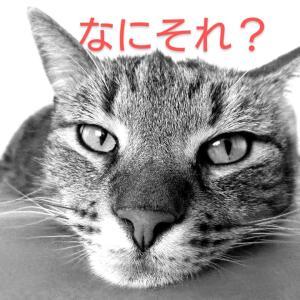 老けないブログ【170】ダイエット中は寝不足厳禁(;・`д・´)