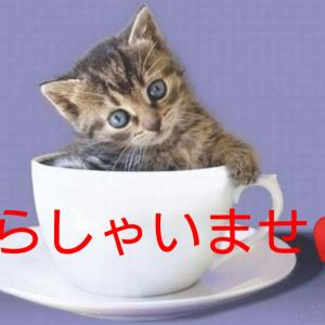 老けないブログ【268】おかあさんやすめ( ゚Д゚)