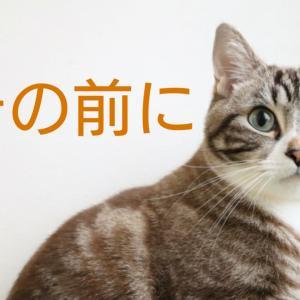 老けないブログ【282】リーキーガット