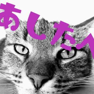 老けないブログ【302】ファスティングの盲点