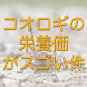 【高タンパク】コオロギの栄養価がスゴい件【プロテイン代用可能?】