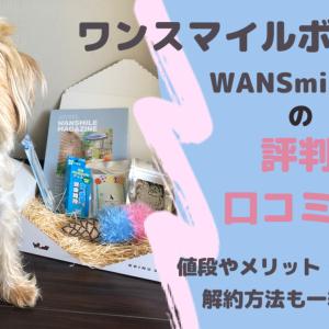 ワンスマイルボックス(WANSmileBOX)こいぬすてっぷの成犬版