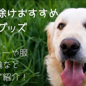犬の虫除けおすすめグッズ スプレーや服・首輪など一挙ご紹介!