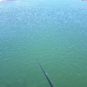 2020年 カラフトマス釣り オホーツク初戦