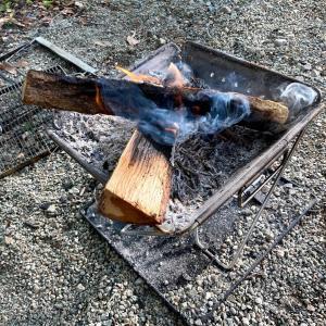 【焚火】物置に保存しておいた1年越えの薪!虫に湿気に樹液に困りました。