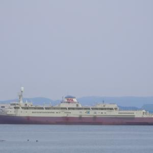 写真館〈9〉2012.3/11 青函連絡船 羊蹄丸(香川県多度津沖)