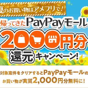 今日のお買い物はauPayマーケット&PayPayモール、実質無料でお買い物♪