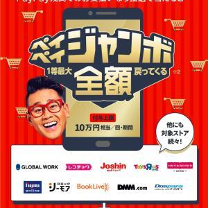 12月Pay活☆PayPay編!最大20%還元&paypayジャンボ!