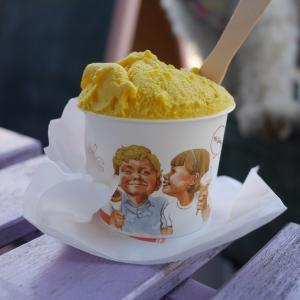 【茅ヶ崎】プレンティーズアイスクリーム◆新鮮手作りアイスクリームテラスはワンコOK
