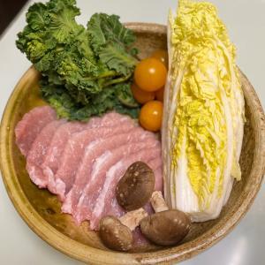 《手作り犬ごはん》ティファール電気圧力鍋Cook4meで10分豚ヒレ肉と白菜の蒸し煮