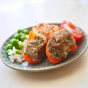 《犬ごはん》旬のイワシを食べよう!彩り鮮やかスタッフドズッキーニ