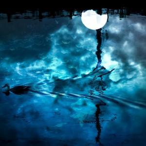 今日はふたご座新月!最高のヒーリングができて、ルンルンしています。
