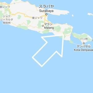 ジャワ島東部のDorcus〜パリー?