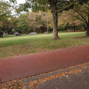 公園の喫茶店