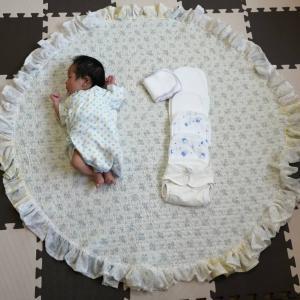 【1歳4ヶ月でおむつが外れるまで】生後2週間から布おむつ育児本格始動開始!編