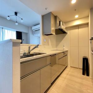 キッチンをプチリフォーム-食洗機の機種変とガスコンロをIHに変更-