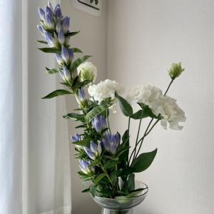 今月の花のテーマはブルー!その他、植物にまつわる出来事