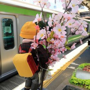 小便小僧、2年前の浜松町にて、桜満開♪