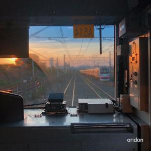 E217系、夕陽を浴びて(1)