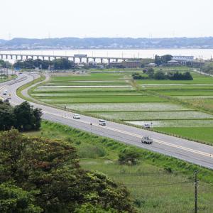 鹿島線のE131系、北浦橋梁を渡りまもなく終点鹿島神宮に到着