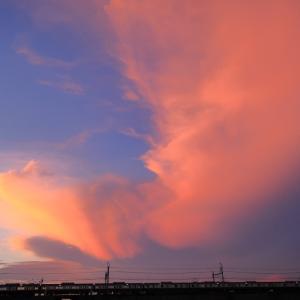 京急600形、燃える赤い空と赤い電車の織りなす劇的な夕焼け