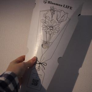 「ブルーミーライフ」から2回目に届いたお花とクーポンをご紹介