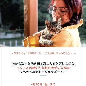 【4月30日〆切】不安や恐れに振り回される毎日から、ペットと一緒に想い出を作る毎日へ