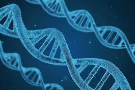 エピジェネティクス。遺伝子のスイッチを自由にオンオフできちゃったらサイコーじゃね?