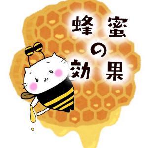 蜂蜜の驚くべき効果!美容と健康には蜂蜜がおすすめ
