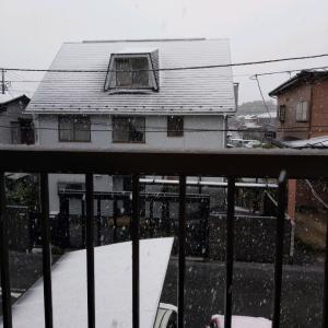 雪だるま〜〜!!