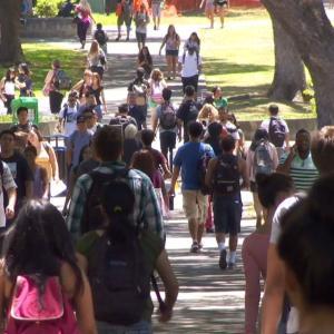 【新型コロナウイルス】ハワイ大学が新年度の出願受付期間を延長