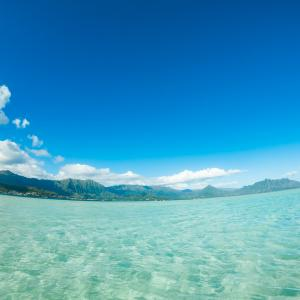 【速報】ハワイへの訪問者数が5月に入って2〜3倍になる見込み