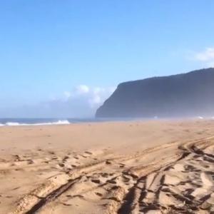【ハワイ】カウアイ島でビーチが再オープン!