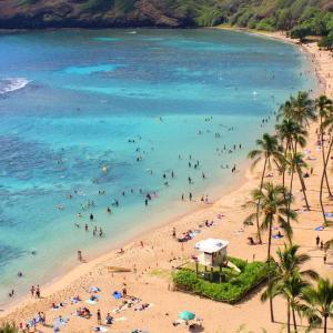 【ハワイ】一時閉鎖中のハナウマ湾の海水の透明度が向上!
