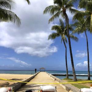 【ハワイ】8月の訪問者数、前年比98%減