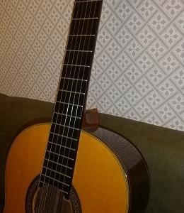 ひとりギター。 カラオケ店。