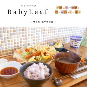 【岐阜市】BabyLeaf(ベビーリーフ)ナチュラル系カフェで食べる、野菜たっぷりランチと名物のじゃがいもドーナツ!