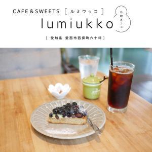 【愛西市】CAFE&SWEETS lumiukko(ルミウッコ)北欧カフェでゆったり。ブルーベリータルトのおやつタイム♪オーガニック・テイクアウトあり