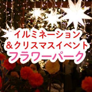 クリスマスイルミネーションが壮大!ブルーアイのサンタと写真が撮れる♪映えスポットいっぱい♪はままつフラワーパーク2019年12月