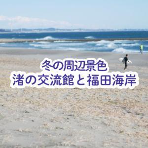 【磐田市】渚の交流館からの海岸線が圧巻!サーファー設備有り・砂嵐に注意