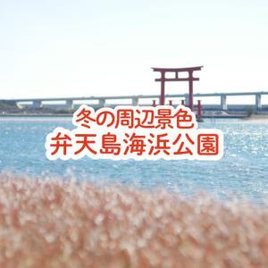 【浜松市】弁天島海浜公園の砂浜とその周辺「冬の散歩」の景色(12月下旬)