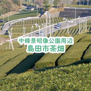 【島田市】雄大な茶畑のある絶景!中條景昭像公園周辺・蓬莱橋も眼下に眺める♪